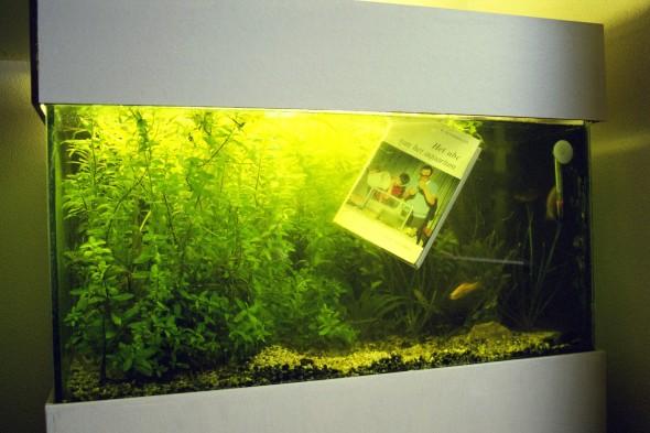 32_2000_aquarium_LR